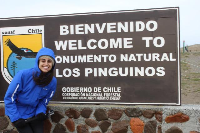 Isla Magdalena - Chile / Parada en Punta Arenas antes de ir a Torres del Paine de Luna de Miel