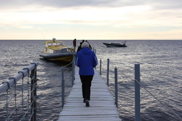 Estrecho de Magallanes - Paseo para ir a Isla Magdalena a ver pinguinos / Parada en Punta Arenas antes de ir a Torres del Paine de Luna de Miel